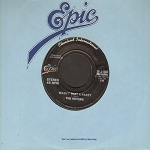 Rovers - Wasn't That A Party/Matchstalk Men And Matchstalk Cats And Dogs - NM9/ - 45 rpm Records