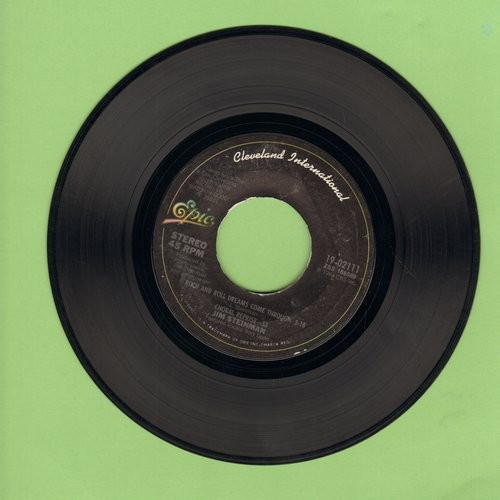 Steinman, Jim - Rock And Roll Dreams Come Through/Love And Death And The American Guitar - EX8/ - 45 rpm Records