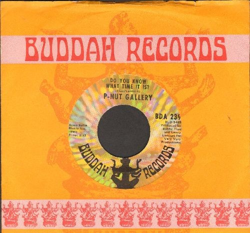 P-Nut Gallery - Do You Know What Time It Is? (Howdy Doody Time!)/Lanny's Tune (with Buddah company sleeve) - EX8/ - 45 rpm Records