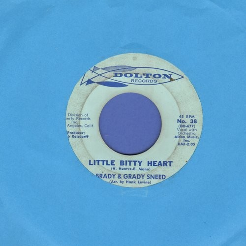 Sneed, Brady & Grady - Little Bitty Heart/Leavin' It All Up To You - VG7/ - 45 rpm Records