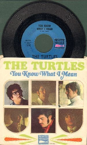 Turtles - You Know What I Mean/Rugs Of Woods And Flowers (with picture sleeve) (bb, minor wol) - EX8/EX8 - 45 rpm Records