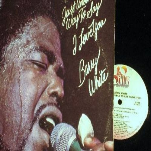 White, Barry - Just Another Way To Say I Love You: Heavenly That's What You Are To Me, I'll Do For You Anything You Want Me To, Love Serenade (Parts 1 + 2) (Vinyl STEREO LP record) - NM9/VG7 - LP Records